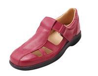 ladies-shoe